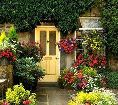 Цветы у входных дверей | Colors.life