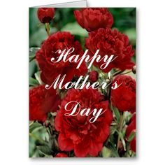 Red Carnation Flowers Greeting Card http://www.zazzle.com/red_carnation_flowers_greeting_card-137459003183311405?rf=238271513374472230  #mothersday