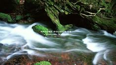 Nature Sound 12 - THE MOST RELAXING SOUNDS -