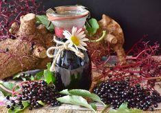 A Bodza gyógynövény és ínyenc csemege – BioBody Blog