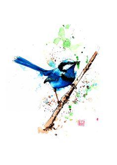 Blue Wren Watercolor on Cold Press Paper  https://www.etsy.com/au/listing/197707259/fairy-wren-a4-watercolour-print-by-peter?