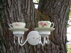 Bird feeder by trista.day