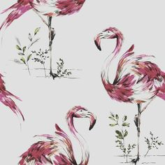 Hot Pink Flamingo Wallpaper