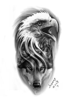 Tattoo designs, eagle and wolf, black and gray - Tattoo designs, eagle and wolf, black and gray - Arm Tattoos Drawing, Cool Arm Tattoos, Tattoo Design Drawings, Best Sleeve Tattoos, Tattoo Designs, Bald Eagle Tattoos, Wolf Tattoos Men, Native Tattoos, Wolf Tattoo Design