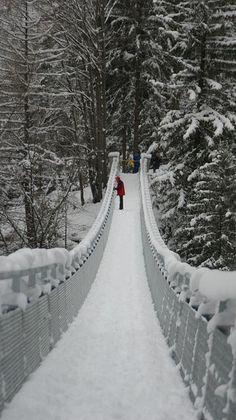 I love WInter snow scenes Winter Szenen, I Love Winter, Winter Magic, Winter Christmas, Winter Walk, Prim Christmas, Foto Poster, Snowy Day, Snow Scenes