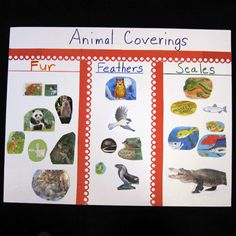 Science: Fur, Feathers, and Scales column chart) Compare, using descriptions and drawings, the external body parts of animals (including humans) and plants and explain functions of some of the observable body parts. Pre K Activities, Animal Activities, Children Activities, Kindergarten Science, Preschool Education, Preschool Classroom, Classroom Themes, Teaching Resources, Teaching Ideas