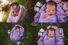 outdoor newborn photography with pony Newborn Photography Perth | Blee Photography