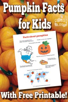 Pumpkin Facts for Kids With Free Printables Halloween Facts For Kids, Fun Facts For Kids, Halloween Activities For Kids, Science Activities For Kids, Autumn Activities, Science Ideas, Learning Activities, Halloween Crafts, Fun Facts About Fall
