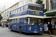This is a blue bus, Millie!