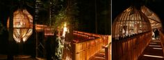 yellow-tree-house-new-zealand-pacific-environment-architects22