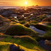 Porth Nanven Beautiful carpet of green algae only revealed by the retreating tide. Places In Cornwall, Waves On The Beach, Nature Scenes, Amazing Nature, Seaside, Landscape Photography, Sunrise, Beautiful Places, Places To Visit