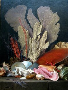 Anne Vallayer-Coster, Panaches de Mer (Plumes of the Sea), 1769.