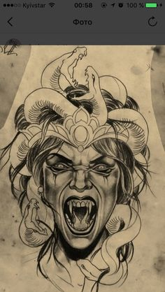 This image embodies the fear that Medusa was able to put into her adversaries in Ovid's Metamorphoses. It was believed that slaying her was impossible for a mortal, thus she was avoided at all costs by most. This image certainly shows her evil nature.