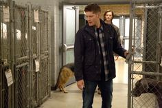 Dean  #Supernatural #DogDeanAfternoon  9.05  I was very happy about all the bowleg action last night. :)