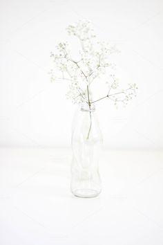 Flowers in Bottles 3 by ForCreativepreneurs Stock on @creativemarket