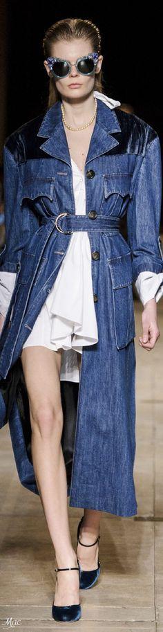 Fall 2016 Ready-to-Wear Miu Miu