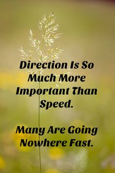 Inspirational Quotes of The Day - Day 39 - We Should Do This