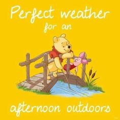 Pooh Bear Winnie Pooh Zitate Winnie The Pooh Freunde I Aah Pu Der