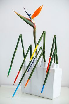 Equisetum and pencils with a bird! Ikebana Arrangements, Creative Flower Arrangements, Ikebana Flower Arrangement, Floral Arrangements, Art Floral, Floral Design, Flower Show, Flower Art, Cactus Flower