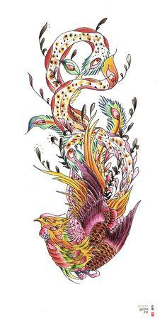 Google Image Result for http://tattoo.yoso.eu/wp-content/uploads/2011/06/phoenix_tattoo_study1.jpg