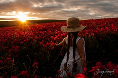A field of poppies with my daughter Adrienne.