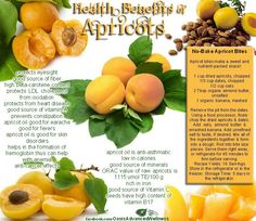 ~ Health Benefits of Apricots ~