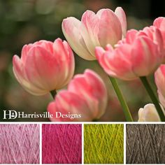 'Pink Tulips' color palette features our SHETLAND yarn in Water Lily, Raspberry, Grass, and Toffee.
