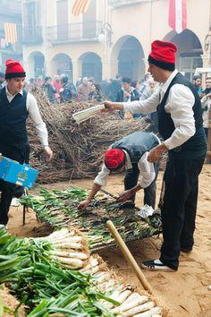 Popular gastronomical event in Catalonia. Cooking onion during Calçotada Valls Catalonia