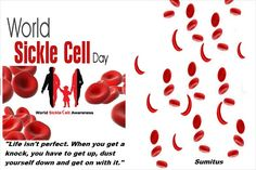 WORLD SICKLE CELL DAY  World Sickle Cell Day comes on June 19 of every year. Sickle Cell Disease is an inheritable, genetic and fatal disease causing red blood cells disorders which have been classified as sickle cell anemia and it may lead to death. World Sickle Cell Day is observed to cover all the curable standards through the fast awareness program to take this genetic health condition under control across the world. The variety of promotional activities will be conducted by the WHO…