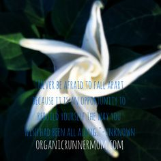 Never be afraid to fall apart because it is an opportunity to rebuild yourself the way you wish had been all along.--unknown Organic Runner Mom #inspiration
