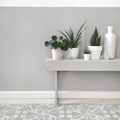 Mooi: Grijze geverfde lambrisering; planten groeperen, Serax laboratoriumglaasjes - Fotografie & styling door @tanjavanhoogdalem