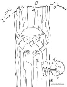 Owl in a tree coloring page for my Origami Owl jewelry bars! www.LoveStoryLockets.OrigamiOwl.com   Mentor # 6216