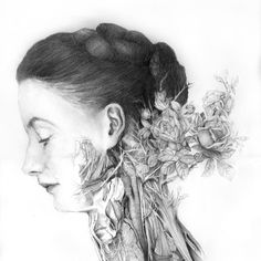 Nunzio Paci - Dissection of a rose / Dissezione di una rosa Nunzio Paci, Vince Low, Human Anatomy Art, Natural Form Art, Classic Paintings, Ap Art, Gcse Art, International Artist, Fantastic Art