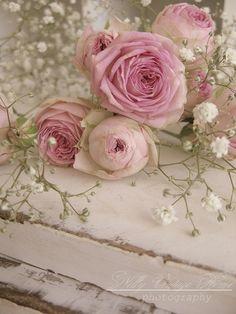 roses on a shabby chic table ...