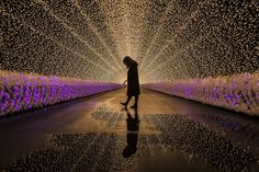 In winter in Japan, the event of illumination begins in various places. Among them, the light tunnel of Nabana no Sato is particularly popular and attracts people.
