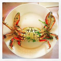Bahia's Crab. It is smaller but much tastier.