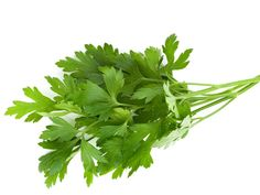 The health benefits of parsley include controlling cancer, diabetes, and rheumatoid arthritis, along with helping prevent osteoporosis.