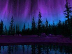 Aurora between the antlers