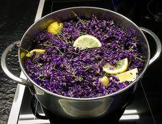 Mojito, Vegetarian Recipes Easy, Healthy Salad Recipes, Easy Cooking, Cooking Recipes, Jewish Recipes, Sweet Desserts, Natural Medicine, Kraut