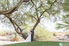 Bride and Groom at Desert Willow Golf Resort Wedding Venue #desertwillowweddings