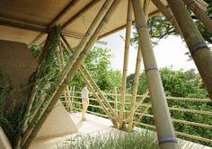 """O projeto em bambu, """"One With The Birds"""" - um entre os pássaros –  foi desenvolvido para a  """"AIM Legend of the Tent"""" que acontece na China. A competição convocou arquitetos para projetar um hotel- tenda com baixo impacto ambiental.  #bambu #arquitetura #sustentavel #sustentabilidade"""