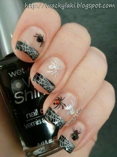 Spider Web French