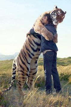 Tygrys-moim zdaniem to najpiękniejsze zwierze świata..a ten Pan, to fajny Pan:-)