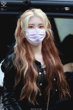 Vampire Hair, Red Hair Inspo, Kpop Hair, Fairy Hair, Gorgeous Hair Color, Hair Streaks, Hair Dye Colors, Aesthetic Hair, Hair Day