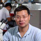 Identifican una molécula clave en el proceso de neurorregeneración