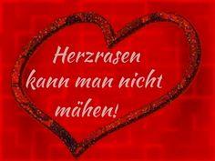besuchen #lustig #witzig #lustigesprüche #jokes #zitat #funnyshit #love #schwarzerhumor #lachflash
