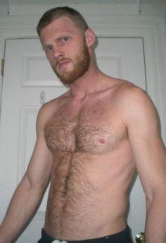 Hairy-Chest-Beard