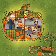 Pictures in the pumpkin!