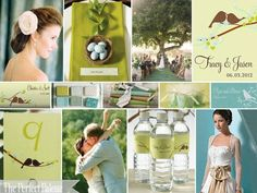 wedding color combination: aqua, chartreuse, light green and chocolate brown