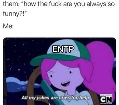 Accurate Personality Test, Entp Personality Type, Entp And Intj, Intp, Pisces And Aquarius, Funny Memes, Jokes, Free Therapy, Cry For Help